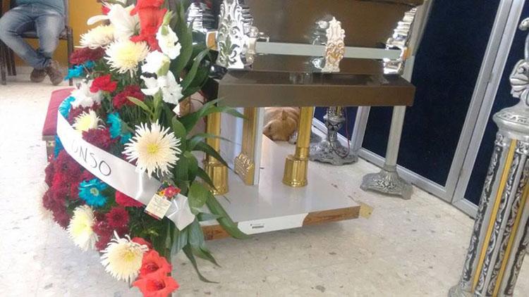 En México un perro aparece en el funeral de su humana después de caminar varios kilómetros