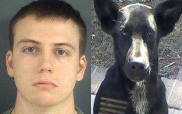 Este soldado fue condenado por ahogar cruelmente a su perra para evadir algunas deudas veterinarias