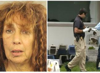 Mujer arrestada por tener cerca de 70 animales en horribles condiciones