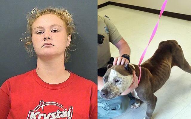 Mujer que maltrataba a sus mascotas le prohibieron tener perros