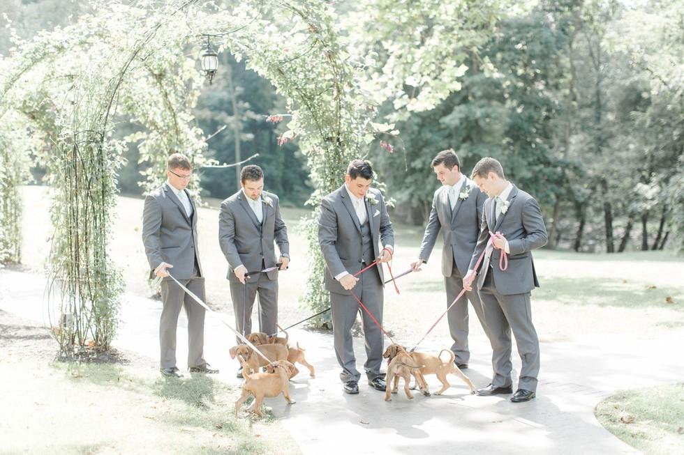 Padrinos y cachorros