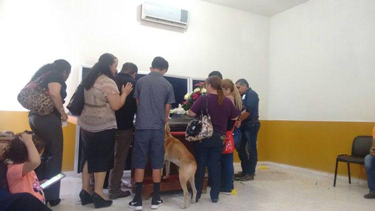 Perro aparece en el funeral donde velaban a su humana