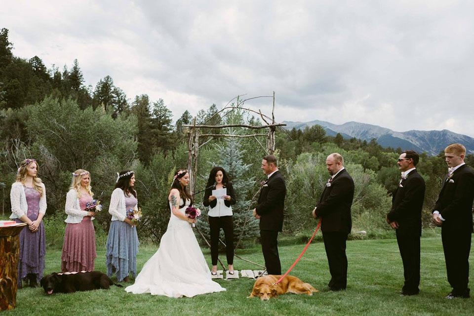 Perro moribundo en la boda