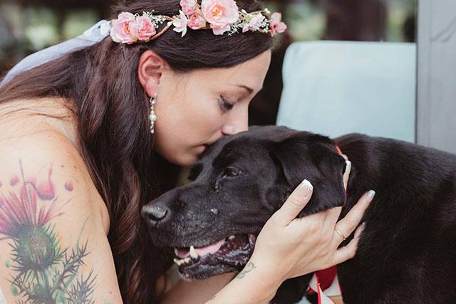 Perro moribundo logra vivir lo suficiente para acompañar a su humana en la boda