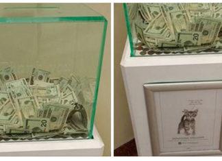 Persona anónima donó 8.000 dolares a un refugio