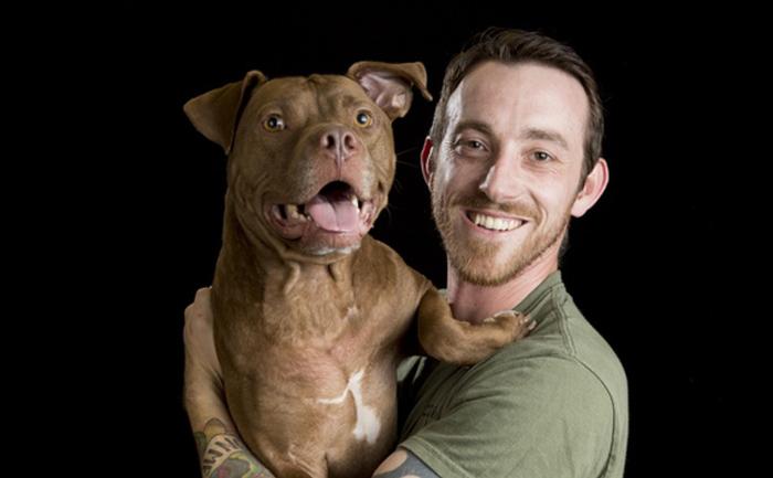 salva perros
