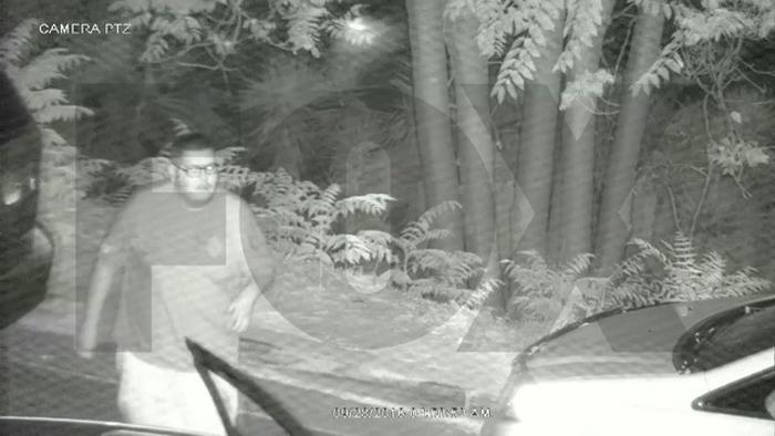 Cámara de seguridad capturó el momento en que un hombre tiro una pit bull a un precipicio