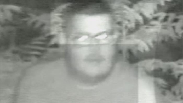 Cámara de seguridad filmó a un hombre mientras tiraba a su pit bull al precipicio