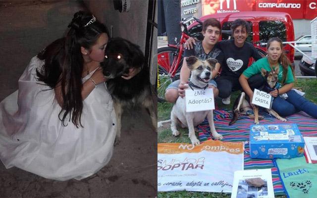 Esta joven de 15 años ha salvado la vida de más de 100 perros en 2 años