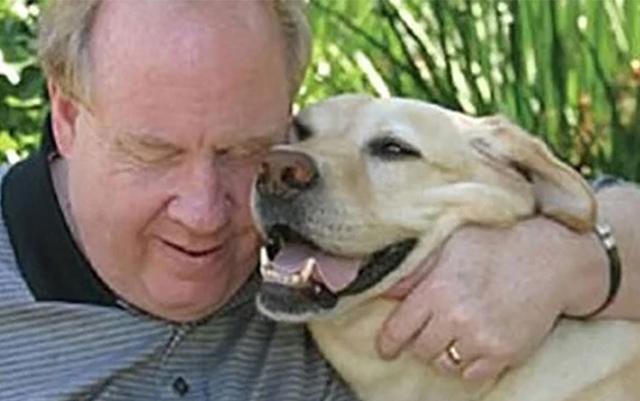 Este perro guia le salvo la vida a su humano en el atentado de las torres gemelas