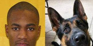 Hombre fue condenado a 45 años de prisión por disparar a un perro de la policía