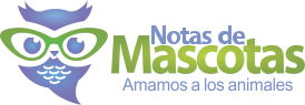 Notas de Mascotas