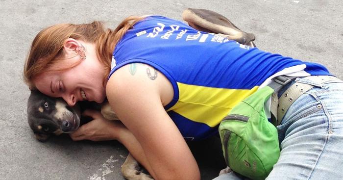 Mujer cuida perros abandonados
