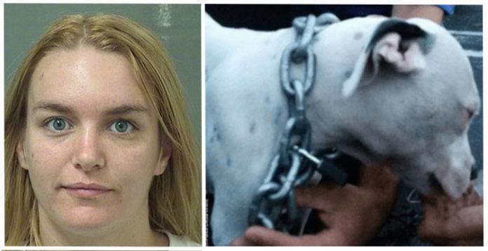 Mujer encadenó a su perro dentro de un auto caliente