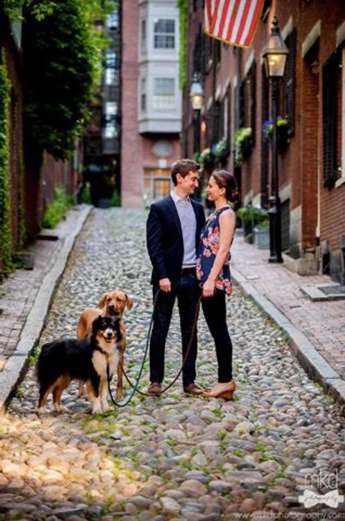 pareja de perros juntaron a dos enamorados