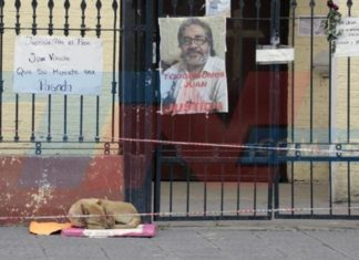 Perro del cura muerto en Tucuman aun lo espera en la puerta de la iglesia