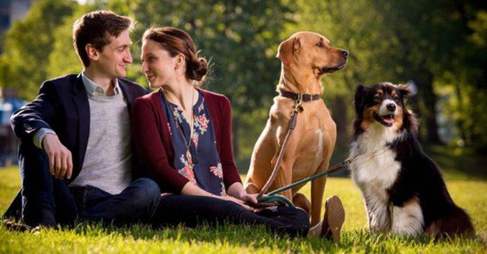 Perros enamorados juntaron a sus humanos y ahora ellos se casarán