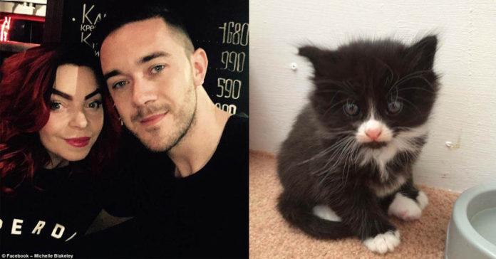 Utilizaron el dinero de su boda para salvar la vida de su gato