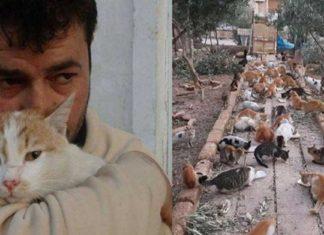 Animales en Alepo han sido víctimas de