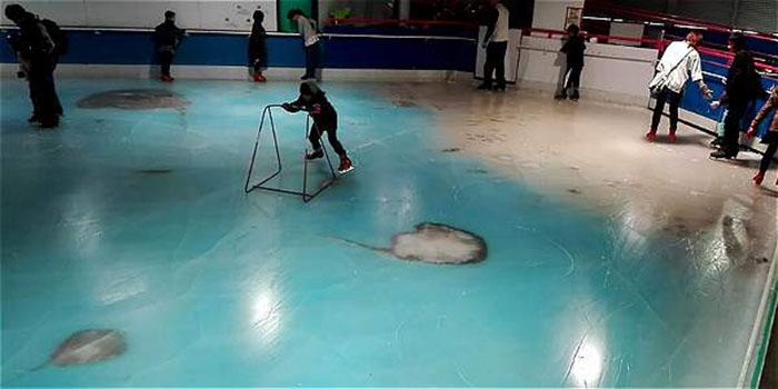 Animales marinos congelados en pista de patinaje