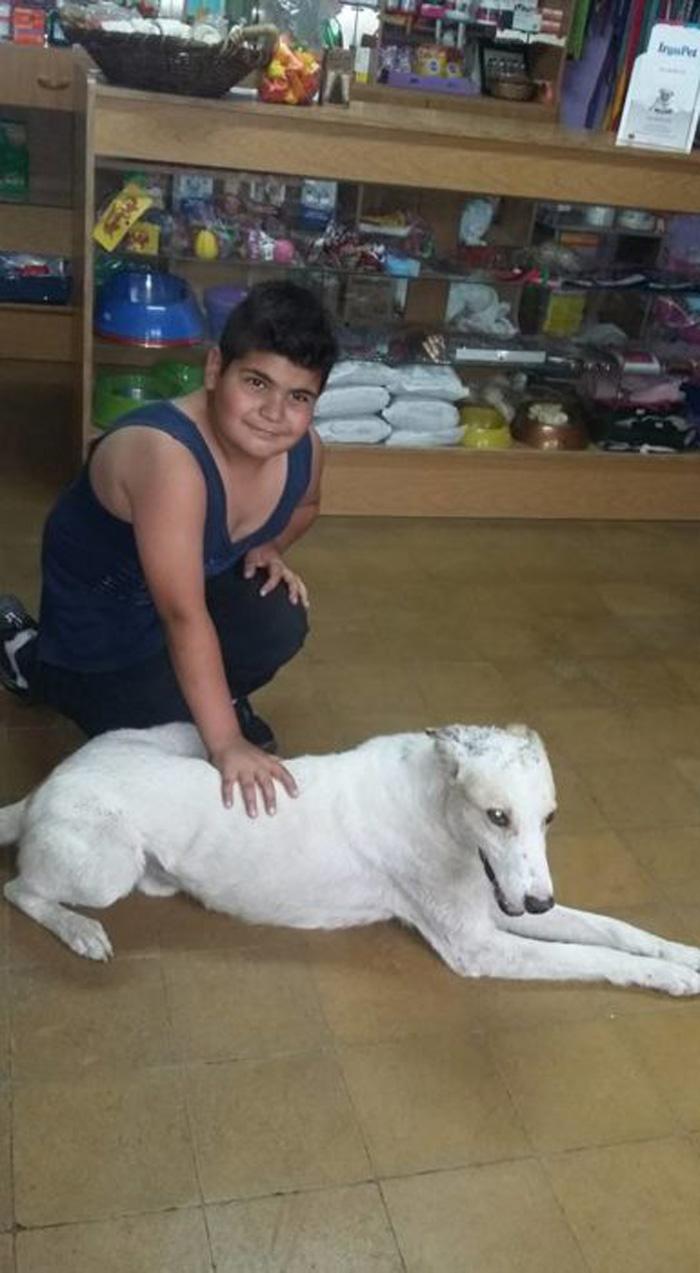 Mauco ayudó a Rocco