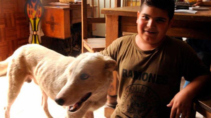 Niño de 9 años salvó a un perro