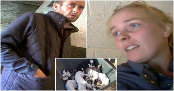 Pareja enfrenta cargos de crueldad animal, tenían una granja de cachorros