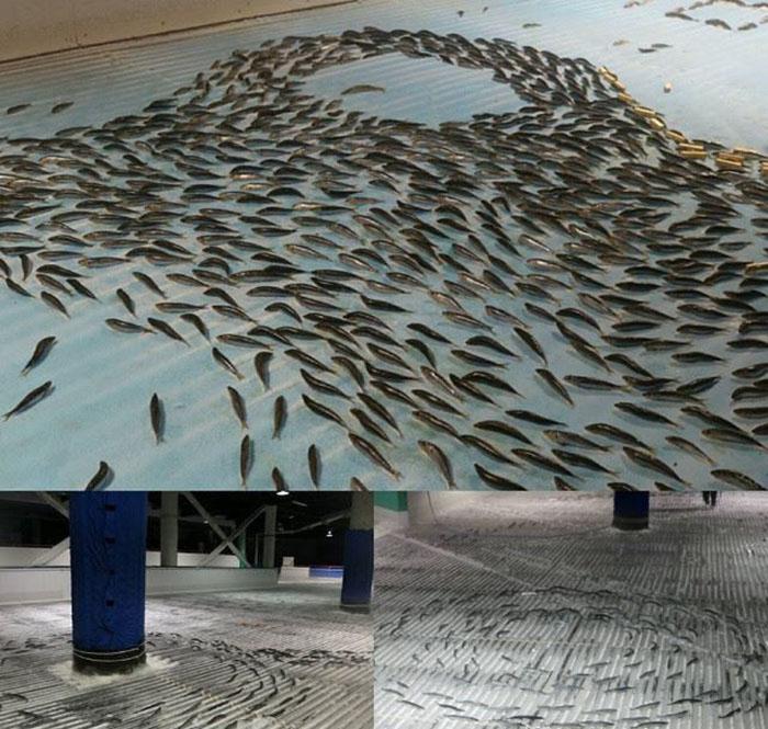 Parque temático congela 5000 peces