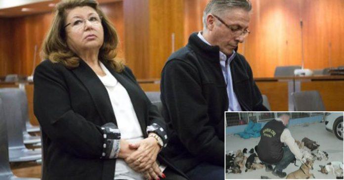 Presidenta de parque animal es acusada de asesinar a 2200 animales