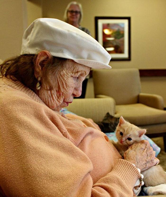 Anciana cuidando a un gato