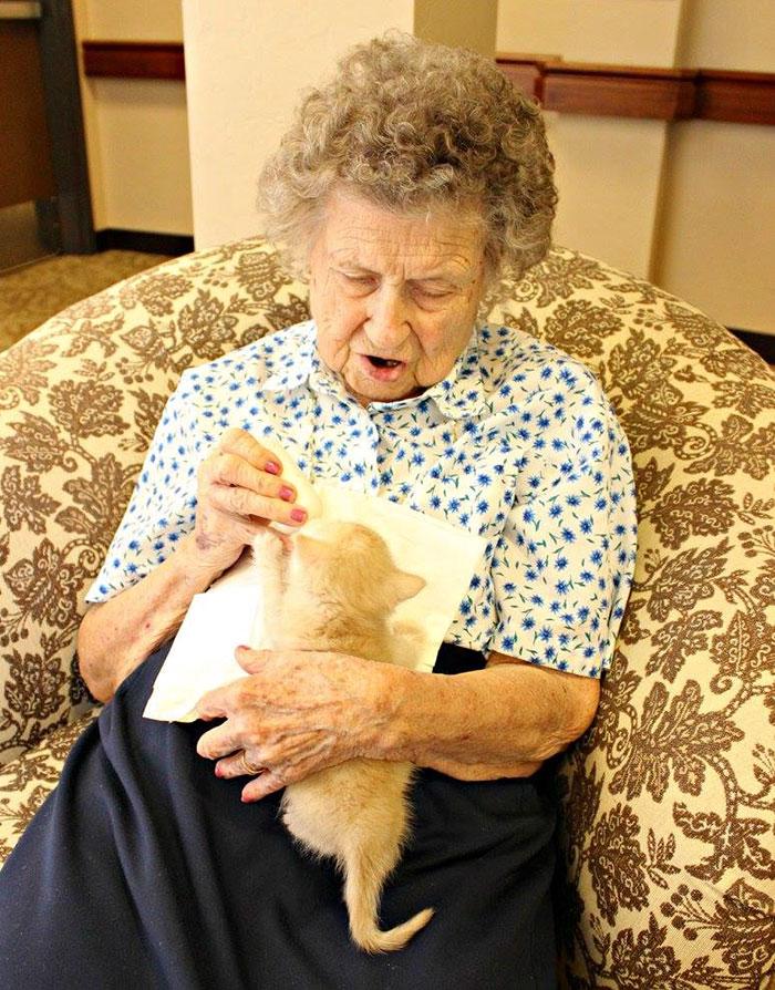 Anciana y gato