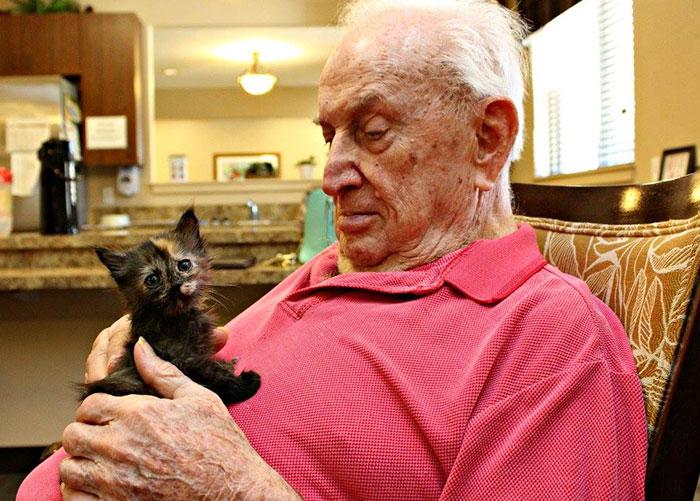 Anciano cuidando un gato