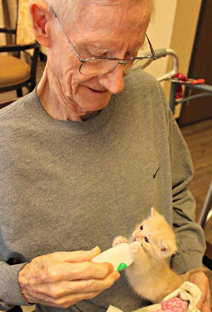 Anciano y gato