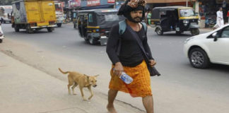 Esta perra caminó 600 km acompañando a un peregrino