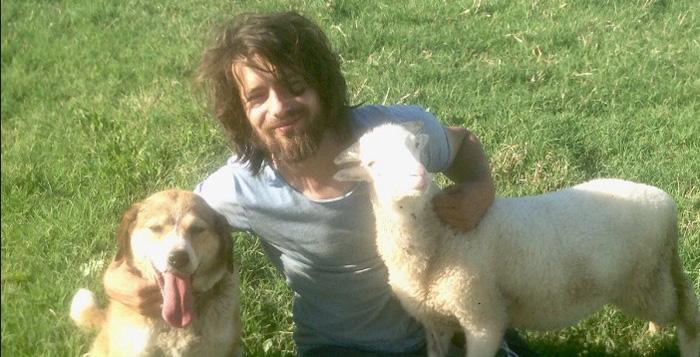 Gökcer Korkmaz ayuda a los animales abandonados