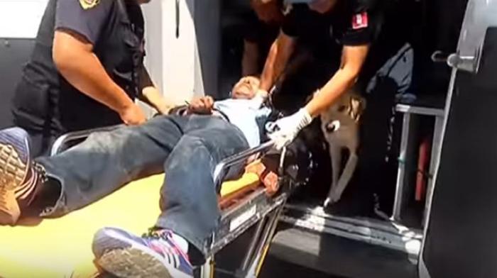 Los dos perros lo acompañaron en la ambulancia