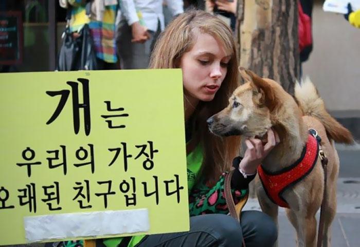 Mercados de carne de perro en Corea del Sur