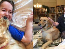 Perra ayuda a un niño con parálisis cerebral tetrapléjica y lo hace feliz