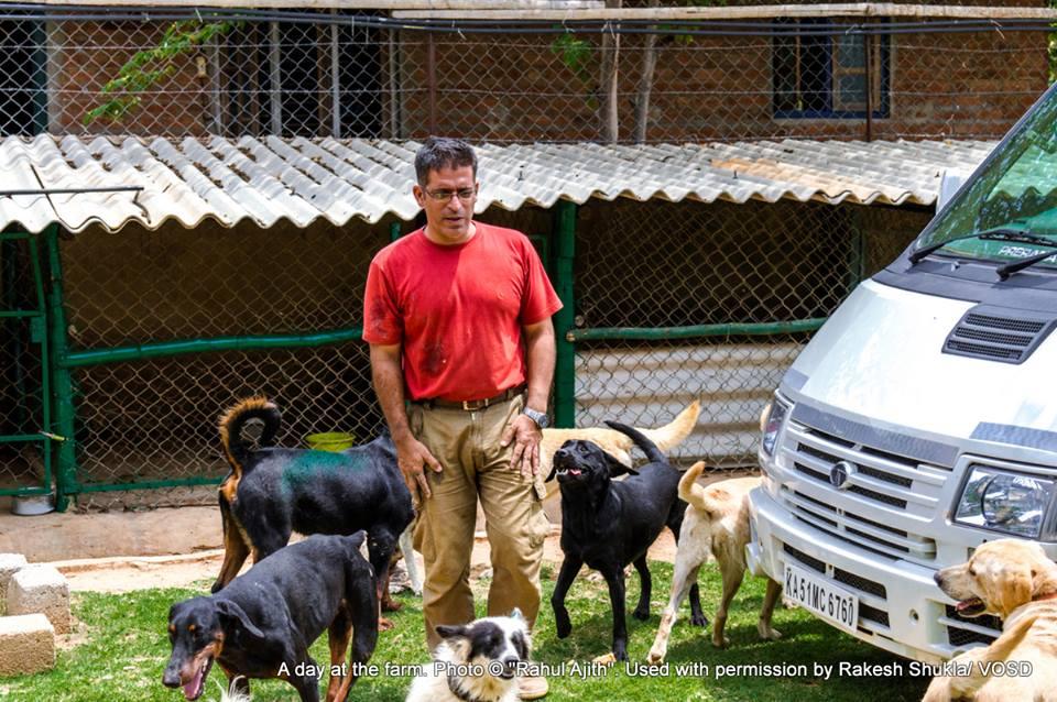 Rakesh y sus perros