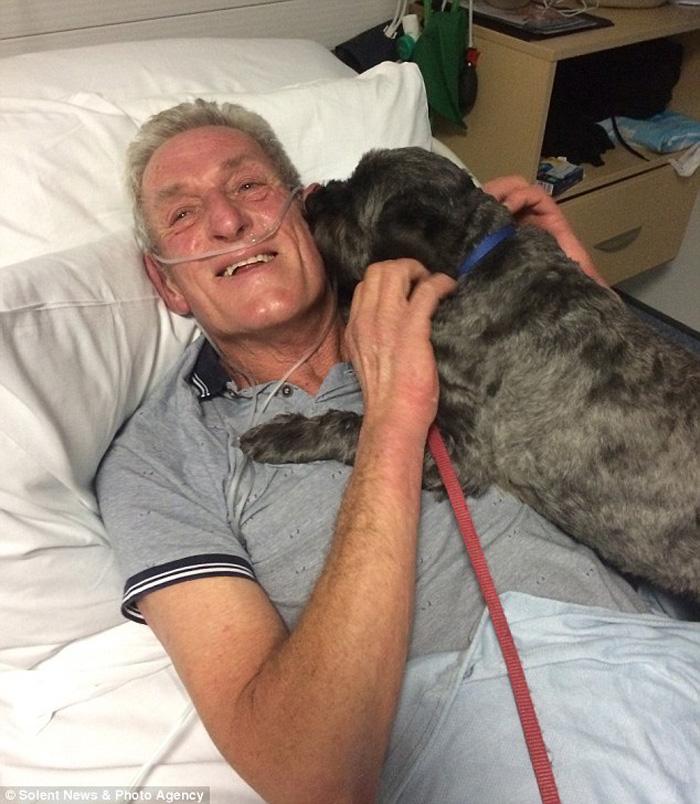 Hombre despertó gracias a su perro