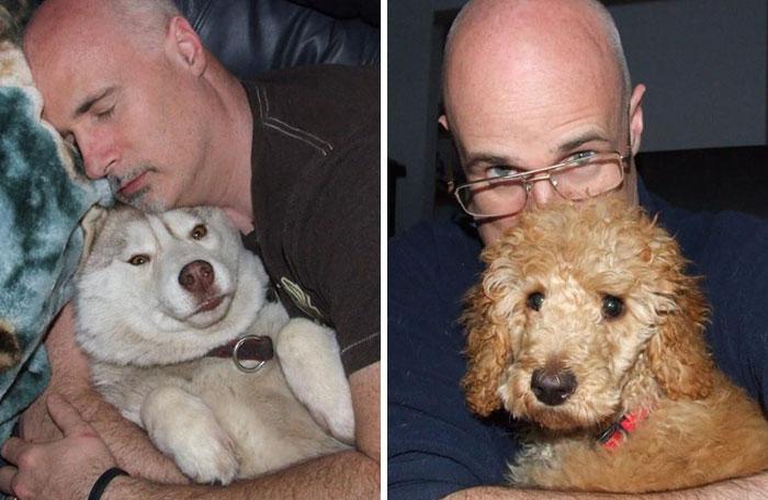 Hombre construye recinto para perros rescatados
