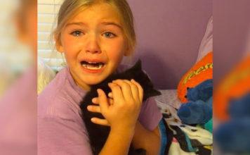 Niña rompe en llanto cuando la sorprenden con un gatito rescatado