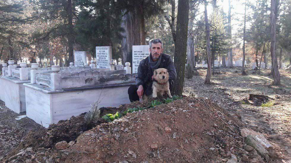 Perro visitando la tumba de su padre humano