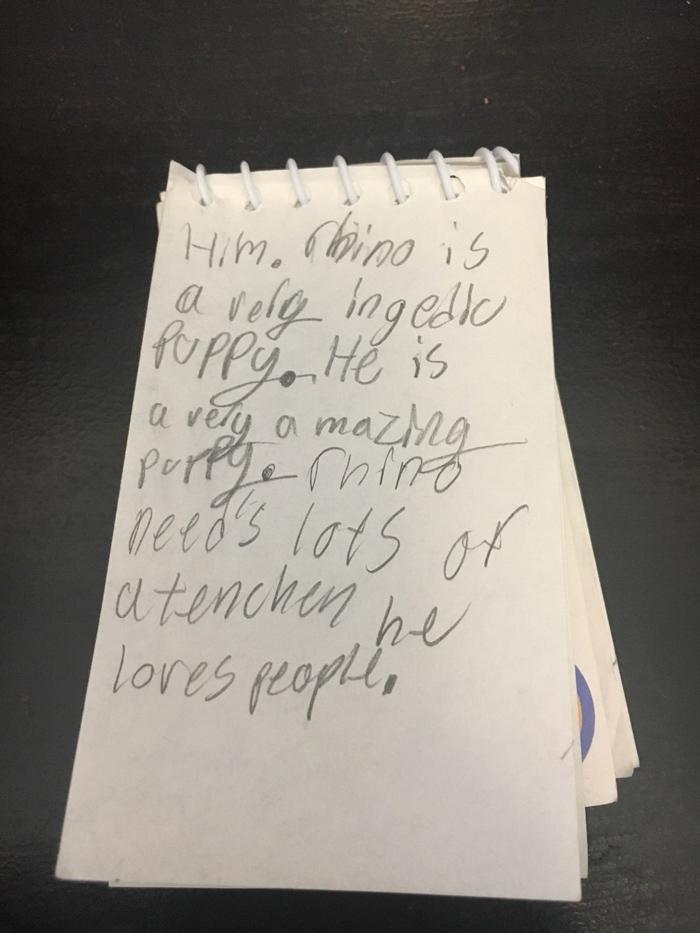 Carta de la niña