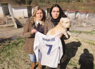 Cristiano Ronaldo ayudó a un refugio de perros