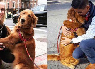 Esta hermosa perra regala abrazos a desconocidos en Nueva York