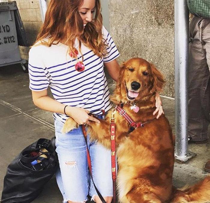 Esta perra ama dar abrazos
