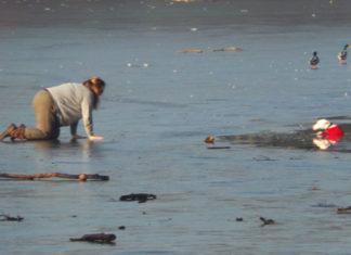 Esta valiente mujer salvó a su perro que cayó en un lago congelado