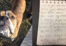Este perro regresó al refugio con una carta de una niña que lo ama mucho