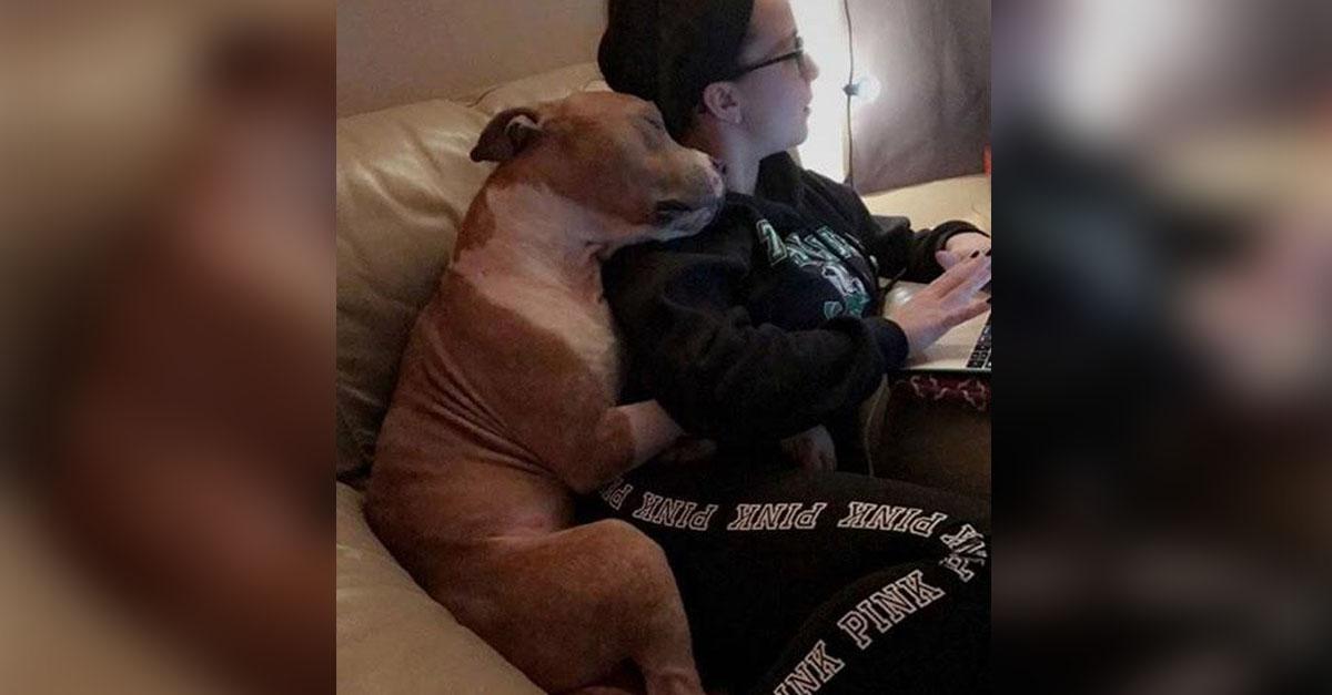Mujer con su perro recién adoptado genera mucha ternura